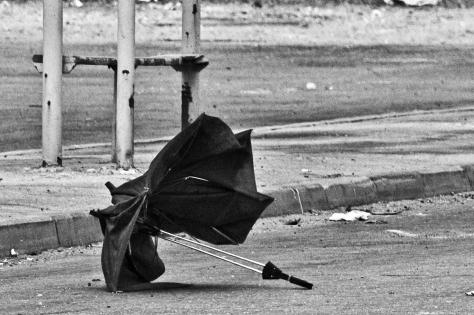 Forgotten_umbrella